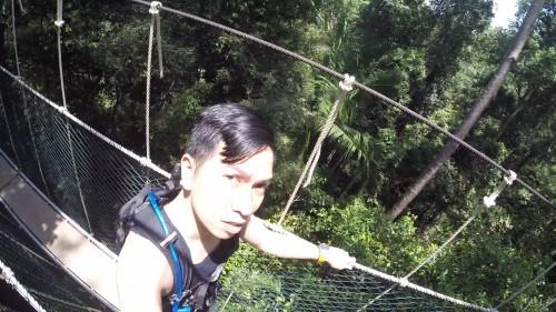 Tree Top Selfie